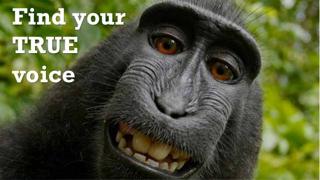 Some variety of monkey grins, as a text overlay implores you to find your voice.